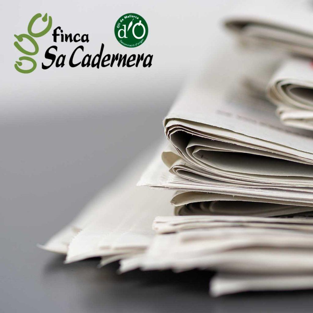 natives Olivenöl Extra mit Ursprungsbezeichnung Mallorca.